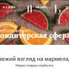 О возникновении марки и новинках — в интервью журналу «Хлебопечение/Кондитерская сфера»